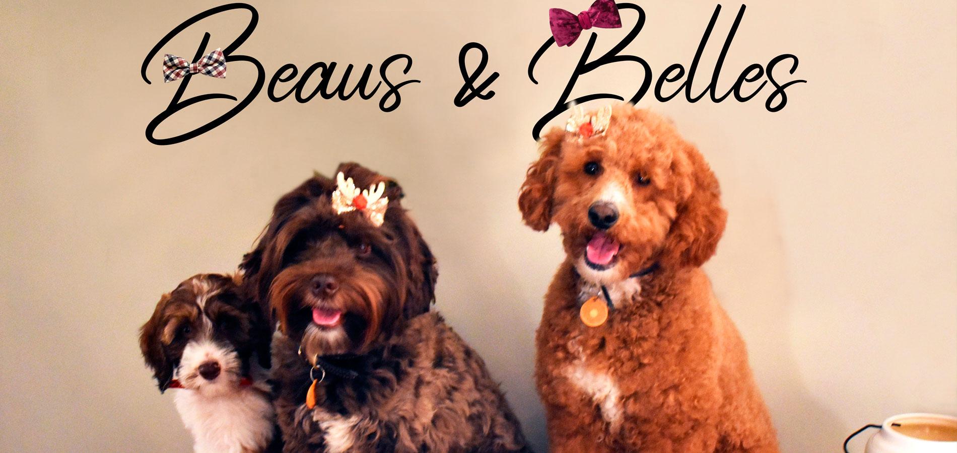 Beaus $ Bells