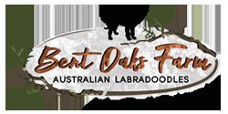 Bent Oaks Authentic Australian Labradoodles